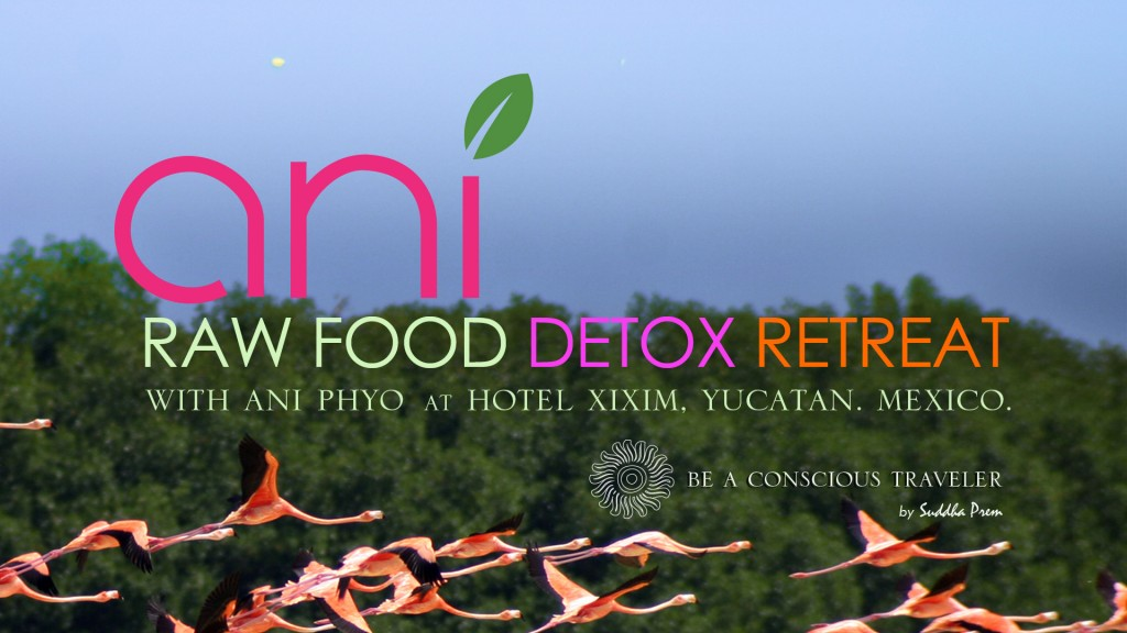 ANI-RAW-FOOD-CARD_v2